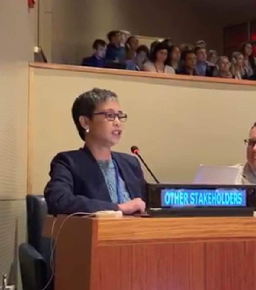 Opportunities, challenges to sustainable development, as HLPF opens in 2019