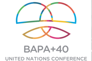 BAPA+40 ends with no commitments, without heeding civil society