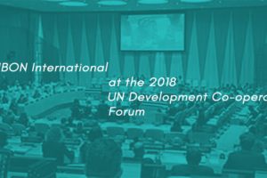 Development with a clear bias for marginalised and oppressed peoples: IBON International at 2018 UN DCF