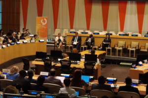 SLM must commit to deepen people's rights for effective development cooperation