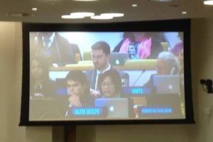 IBON Int'l representative delivers a speech at the 10th Open Working Group on Sustainable Development Goals